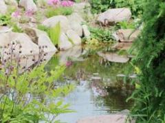 trädgårdgalleri 4 (Copy).jpg