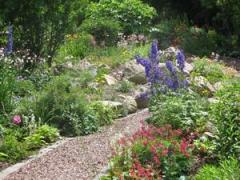 trädgårdsalleri 6 (Copy).JPG