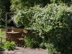trädgårdsalleri 8 (Copy).jpg